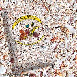 חול יבש וצדפות פוקה